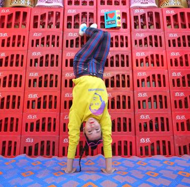 Info - Le Troisième Cirque